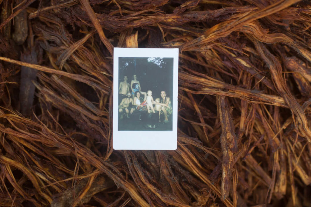ayahuasca peru the polaroid craw picture is lying on top of fresh ayahuasca