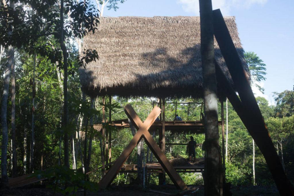 jungle construction